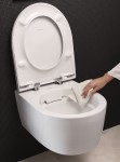 2018 Bathroom 02 H Geberit Rimfree WC ceramic with hand