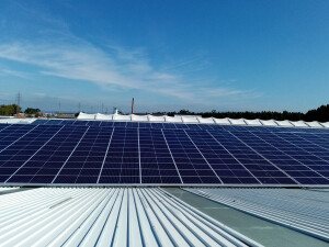 OLI Paineis Fotovoltaicos 2