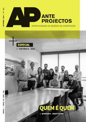 AP_313_Capa