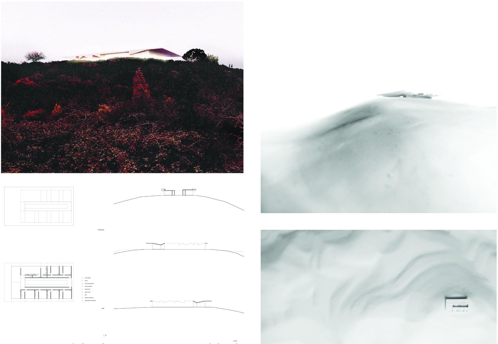 imagem 2 so online